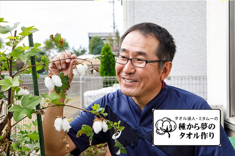 ミタムーの『種からタオル作り』 〜第5回 紆余曲折、やっと綿を収穫!編〜