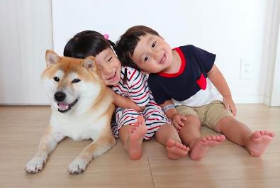 4歳の妹(人間)と2歳の弟(人間)のお兄ちゃん