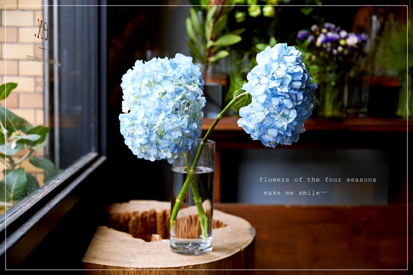 毎日をご機嫌に過ごすために。季節の花を飾ろう【梅雨〜初夏】